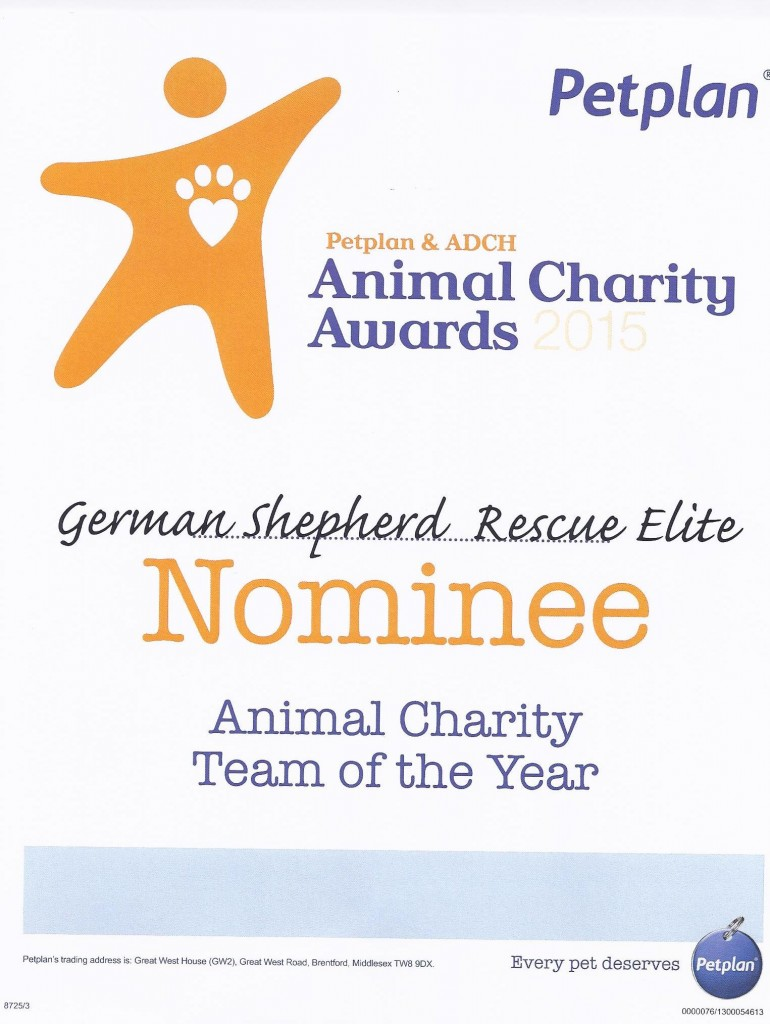 Charity of the Year Nomination Certificate 2015