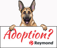 raymond-adoption