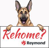 raymond-rehome