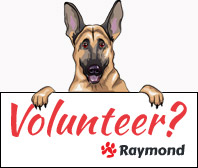 raymond-volunteer