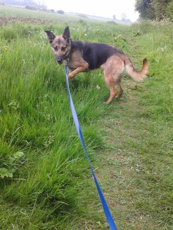 Ella in field-w1000-h800