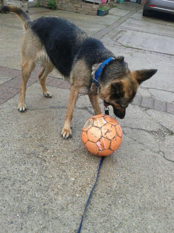 Ella with football-w1000-h800