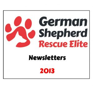 newsletters-2013-w1000-h800