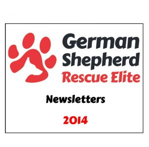 newsletters-2014-w1000-h800