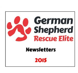 newsletters-2015-w1000-h800
