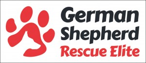 GSRE Logo - text on right