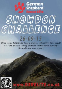German Shepherd Rescue Elite Mount Snowdon Poster