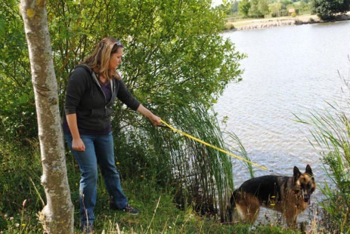 Castlefield Kennel dogs 028-w800-h1000