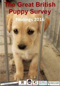 great-british-puppy-survey-front-cover