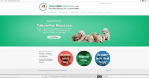 pedigree-pets-registration-club-w1000-h800