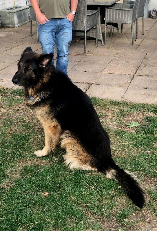 Zeus (5)